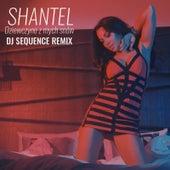 Dziewczyno Z Mych Snów (DJ Sequence Remix) by Shantel