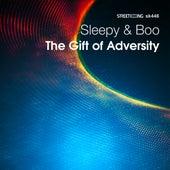 The Gift of Adversity von Sleepy