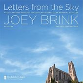 Letters from the Sky by Joey Brink