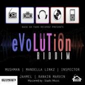 Evolution Riddim by Various Artists