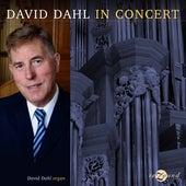David Dahl in Concert van David Dahl