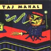 An Evening Of Acoustic Music di Taj Mahal