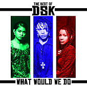 The Best Of - What Would We Do by DSK
