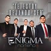 Te Estoy Dejando Ser by Enigma Norteño