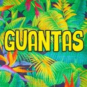 Guantas de Guantas