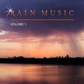 Rain Music, Vol. 1 by Various Artists