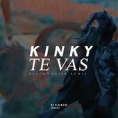Te Vas (Radio Edit) by Kinky