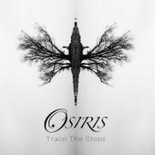 Trace the Steps by DJ Osiris