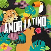 Amor Latino de Various Artists
