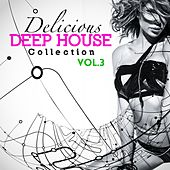 Delicious Deep House Collection Vol.3 by Various Artists
