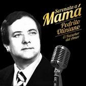 Serenata a Mamá de Pedrito Otiniano