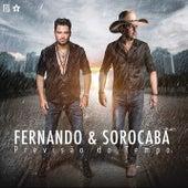 Previsão do Tempo de Fernando & Sorocaba