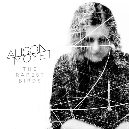 The Rarest Birds by Alison Moyet