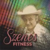 Szenes Iván - Szenes Fitness by Various Artists