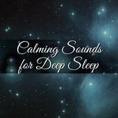 Calming Sounds for Deep Sleep – Waves of Calmness, Spirit Relaxation, Deep Sleep, Sweet Dreams, Night Rest by Deep Sleep Relaxation