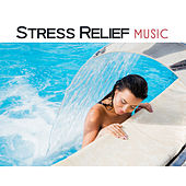 Stress Relief Music – Soothing Sounds for Spa, Massage, Relaxation Wellness, Peaceful Mind, Nature Sounds, Zen Garden, Calm Down, Pure Sleep de Massage Tribe
