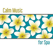 Calm Music for Spa – Nature Sounds for Relaxation, Wellness, Spa Dreams, Deep Sleep, Inner Silence, Deep Massage, Peaceful Music de Sounds Of Nature