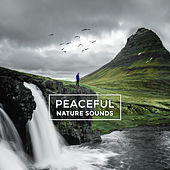 Peaceful Nature Sounds – Healing Tides, Nature Sounds to Rest, Relaxing Music, Mind Control by Echoes of Nature