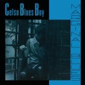 Marginal Blues de Celso Blues Boy