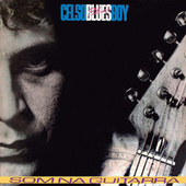 Som Na Guitarra de Celso Blues Boy