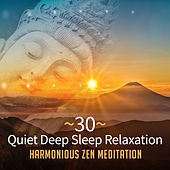 30 Quiet Deep Sleep Relaxation: Harmonious Zen Meditation (Peaceful Instrumental Music and Nature for Reiki Healing, Wellbeing & Lucid Dreaming) by Various Artists