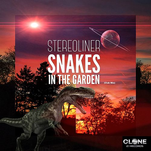 Snakes in the Garden (Club Mix) by Stereoliner