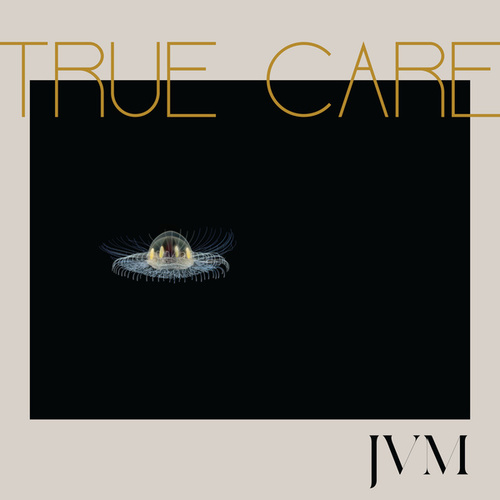 True Care by James Vincent McMorrow