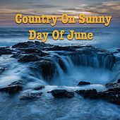 Country On Sunny Day Of June de Various Artists