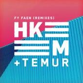 Fy faen (Remixes) by Temur