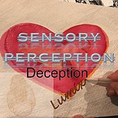 Sensory Perception Deception by Lumix