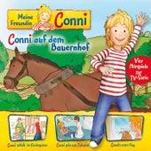 02: Conni auf dem Bauernhof / Conni schläft im Kindergarten / Conni geht zum Zahnarzt / Connis erster Flug (Vier Hörspiele zur TV-Serie) von Meine Freundin Conni