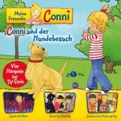 09: Conni und der Hundebesuch / Conni wird Clown / Conni feiert Fasching / Conni und der Dreck-weg-Tag (Vier Hörspiele zur TV-Serie) von Meine Freundin Conni
