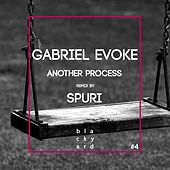 Another Process de Gabriel Evoke