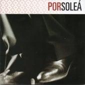 FlamencoPassion. Por Soleá de Various Artists