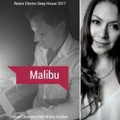 Malibu (Mix Electro Deep House 2017) von Fabian Laumont
