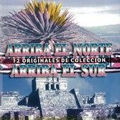 Arriba el Norte, Arriba el Sur [WEA International] de Various Artists