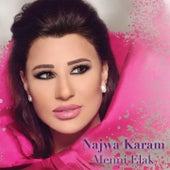 Menni Elak de Najwa Karam