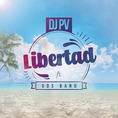 Libertad de DJ PV