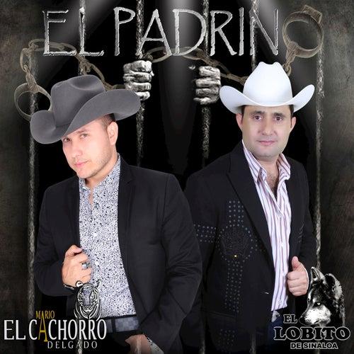 El Padrino by Mario