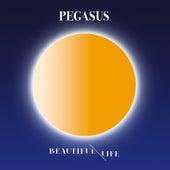 Beautiful Life by Pegasus