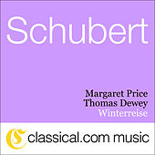 Franz Schubert, Winterreise, D. 911 by Thomas Dewey