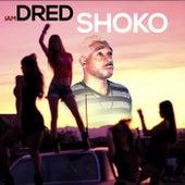 Shoko by Iamdred