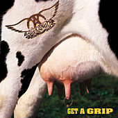 Get A Grip de Aerosmith