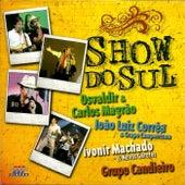Show do Sul  Ao vivo von Various Artists
