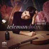 Telemandolin by Alon Sariel
