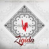 Zigida (feat. Fabregas Le Métis Noir) de Light Music Villa Nova