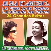 Alma Flamenca by Various Artists
