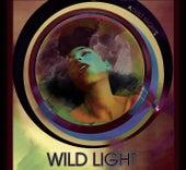 Adult Nights by Wild Light