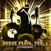 House Flava, Vol. 3 (20 Top House Grooves) de Various Artists
