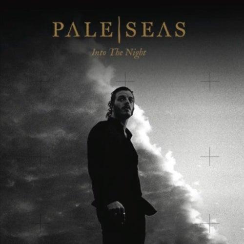 Into the Night (Radio Edit) by Pale Seas